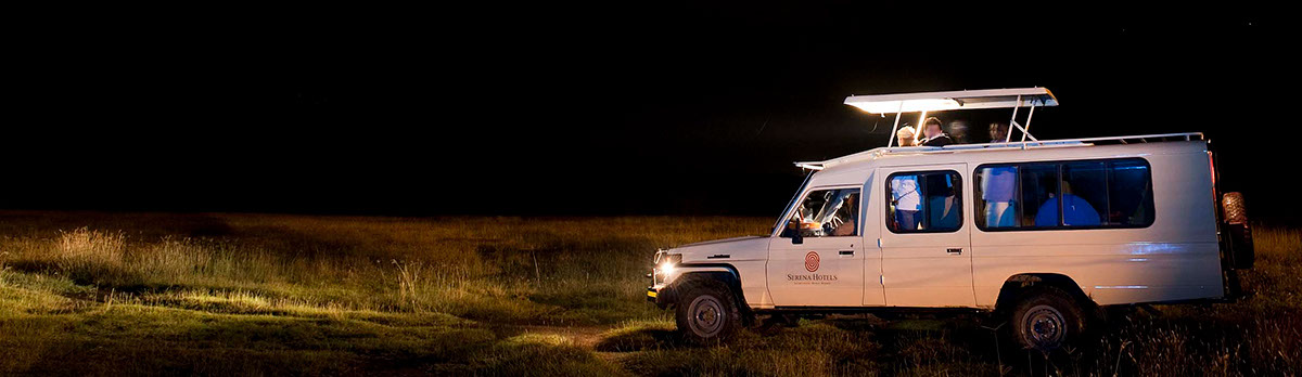 Night Game Drive Experience