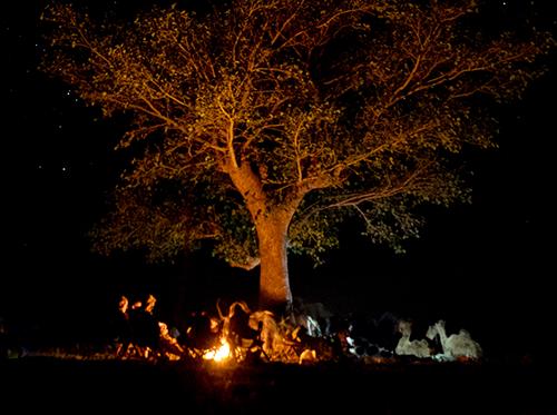 Bobong Campfire